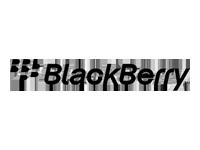 Blackberry Partner Logo