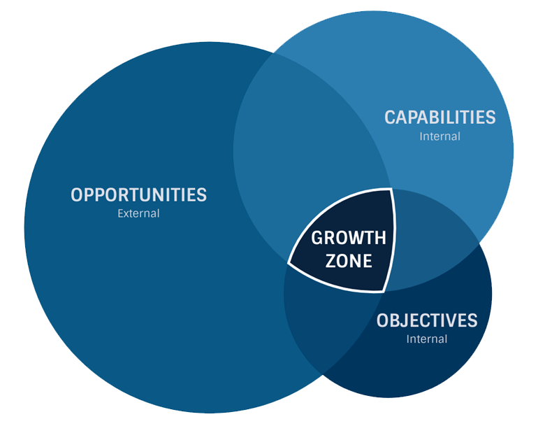 growth opportunities model