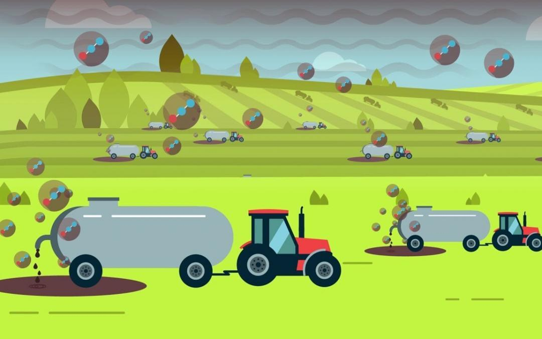 SGTech Commended for its Game-changing and Sustainable Livestock Waste Management Solution, the Integrated Ecosystem Solution